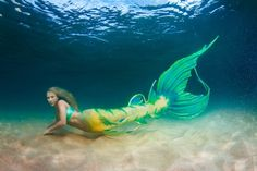 Realistic silicone mermaid tail by Finfolk productions Siren Mermaid, Mermaid Cove, Mermaid Fairy, Fantasy Mermaids, Real Mermaids, Mermaids And Mermen, Mythical Creatures, Sea Creatures, No Ordinary Girl