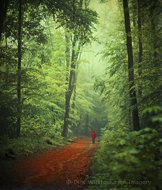 red & green http://wuestenhagen-imagery.photoshelter.com/