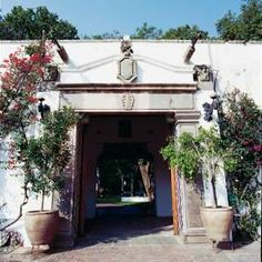 Bougainvillea vines and potted ficus trees accent the grand entry.