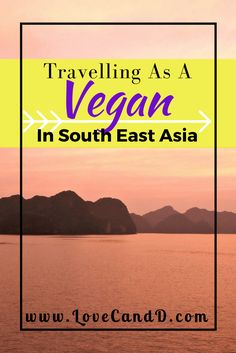 In some countries it's really easy to find tasty and nutritious vegan food. In others, it's a nightmare! Here's a guide on traveling as a vegan in SE Asia