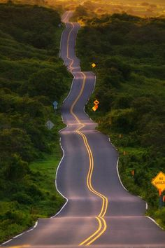The Road To Hana in Maui. the 'drunk hwy.' since this is the ONLY straight stretch of road. Maui Hawaii, Hawaii Travel, Oahu, Hawaii Usa, Hawaii Life, Arizona Travel, Maui Vacation, Vacation Deals, Travel Usa