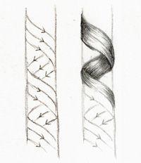 Livin' the dream... — Drawing Tutorial: Hair