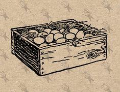 Vintage Image Fresh Eggs Box Instant Download Digital от UnoPrint