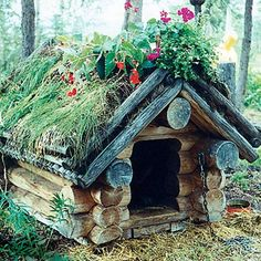 Don't think Jack would go for this but I love it!!!  Google Image Result for http://www.design-decor-staging.com/blog/wp-content/uploads/2012/08/backyard-ideas-dog-house-decoration-3.jpg