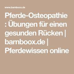 Pferde-Osteopathie: Übungen für einen gesunden Rücken   barnboox.de   Pferdewissen online
