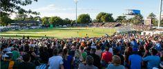 Hamilton,New Zealand. Capacity : February Fixtures South Africa v Zimbabwe Travel News, Travel Guide, Hamilton New Zealand, Cricket World Cup, Four Square, South Africa, Dolores Park, February 15, Australia