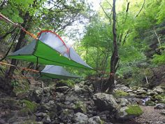 Tentsile Japan : enjoy the wilderness