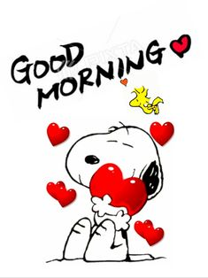 Good Morning Snoopy, Cute Good Morning Quotes, Snoopy The Dog, Snoopy And Woodstock, Snoopy Images, Snoopy Pictures, Charlie Brown Halloween, Charlie Brown And Snoopy, Good Night I Love You
