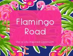How cute is this Lilly inspired classroom decor? I can't wait to use it in my room next year!