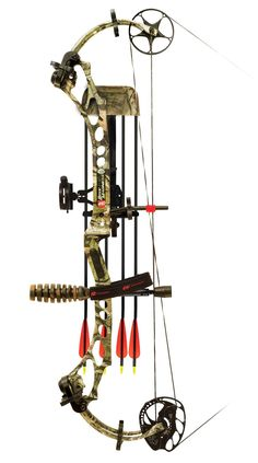 PSE archery compound bow