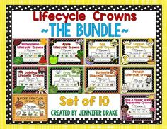 Lifecycle Crowns  ~BUNDLE~ Crown Apple, Pumpkin Life Cycle, Teachers Pay Teachers Freebies, Sequencing Cards, Life Cycles, Teacher Newsletter, Literacy, Saving Money