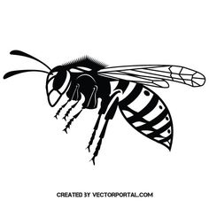 Wasp vector graphics - Free vector image in AI and EPS format. Free Vector Graphics, Free Vector Images, 3d Pencil Drawings, Stencil Art, Stencils, Sketch 2, Black And White Illustration, Wasp, Screen Printing