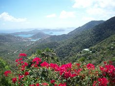 Looking into Coral Bay, St. John