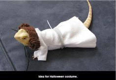 Halloween Costume Idea For Your Bearded Dragon