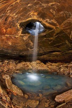 Ozark national forest