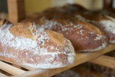 Try having coffee at Wave Hill Breads Cafe in Norwalk. Not only can you grab a cup of coffee, but you can have a tasty treat and take a whole grain artisanal bread home!