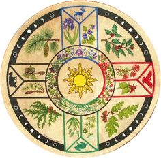 Four Directions Cherokee Herbal Drum                                                                                                                                                                                 More
