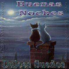 Spanish Quotes, Memes, Movie Posters, Projects, Good Night Sweet Dreams, Gatos, Animales, Illustrations, Bom Dia