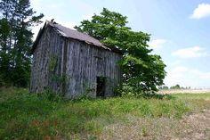 An old NC Tobacco Barn