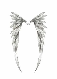 Wings  This is it❣