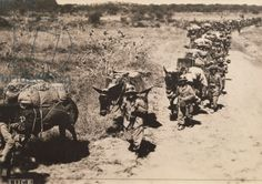 Italian military column moving, Second Italo-Ethiopian War, 1935-36 - This Day in History: May 9, 1936 Italy formally annexes Ethiopia after taking the capital Addis Ababa on May 5 http://dingeengoete.blogspot.com/
