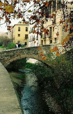 Paseo de los Tristes. Granada Granada Spain, Country Scenes, World Images, Andalusia, Spain Travel, Travel Around The World, Places To See, Beautiful Places, Bridges