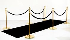 Since we don't want a red carpet, I thought something that looked like this would be perfect!