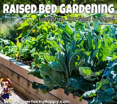 Raised Bed Garden Round-Up! All you need to know about starting and maintaining a raised bed garden anywhere.|ImperfectlyHappy.com