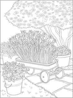 Creative Haven Flower Fancy Coloring Book -- 6 sample pages Dover Coloring Pages, Garden Coloring Pages, Adult Coloring Pages, Coloring Sheets, Creative Haven Coloring Books, Dover Publications, Graphics Fairy, Doodle Designs, Needle Felted Animals