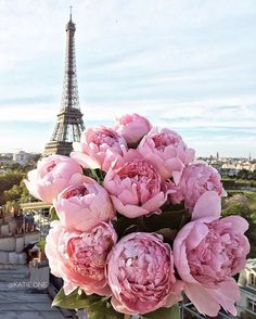 The Eiffel Tower in Paris, France with a bouquet of pink peonies in the foreground. Exotic Flowers, Pretty In Pink, Beautiful Flowers, Beautiful Paris, Pink Flowers, Peony Flower, Cactus Flower, Yellow Roses, Fresh Flowers
