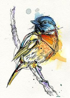 bird artwork Inspiration Water Colors is part of Best Birds Art Inspiration Images Paint Watercolor - Roughly Drawn Blue Bird Pen And Watercolor, Watercolor Animals, Watercolor Paintings, Bird Illustration, Ink Illustrations, Diamond Illustration, Art Adulte, Bird Sketch, Bird Artwork