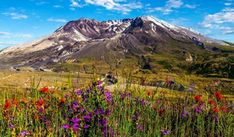 Washington, Mount St Helens high quality wallpaper for Windows and Android Landscape Wallpaper, Nature Wallpaper, Nature Images, Nature Photos, Share Pictures, Saint Helens, Animated Gifs, Desktop Pictures, High Quality Wallpapers