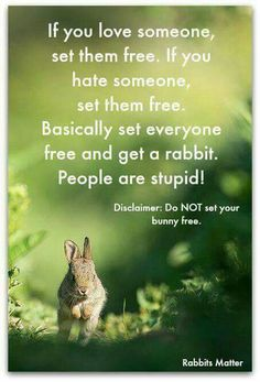 Rabbits Matter created a great meme loved by the Bunny Besties Community.