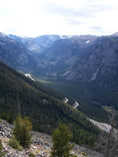 Beartooth pass Montana...have to get back here! One of my favorite drives in the world...