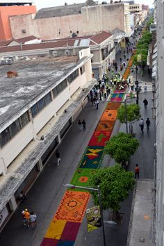 """New #GuinessWorldRecord for #Guatemala! """"The longest sawdust carpet in the world!"""" 2014 @The Tico Times @GuinessWR2014 @EsRecordGuiness"""
