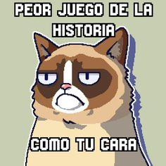 Grumpy Cat ♥