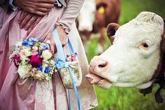 Auch die Kuh war dabei! :-)