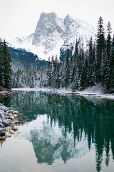 Golden, Jasper, and Banff Canadian Rockies Trip - Forthright Photo - Seattle Wedding & Elopement Pho