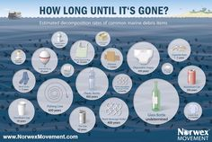 One of these 20 simple things takes 600 years to decompose! [Infographic] - Norwex Movement