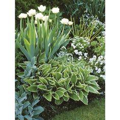 Suday Garden Spring Garden ❤ liked on Polyvore featuring home, outdoors, outdoor decor, outdoor garden decor, garden patio decor and garden decor