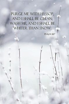 """""""Purify me with hyssop, and I shall be clean; Wash me, and I shall be whiter than snow."""" ~Psalm 51:7  **bathroom**"""