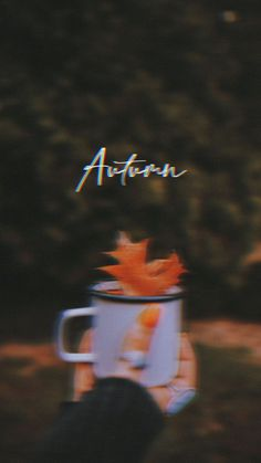 Create your Fall mood with Picsart stickers, filters, and more! #fallaesthetic #fall #fallmood #autumn #freewallpaper Movies, Movie Posters, Art, Art Background, Films, Film Poster, Kunst, Cinema, Movie