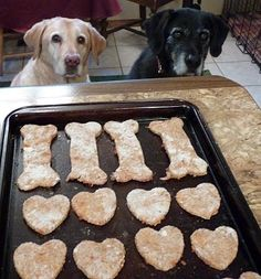 Who could sleep through homemade dog biscuits?