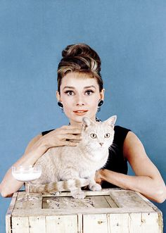 Audrey Hepburn and her Breakfast at Tiffany's furry co-star, Cat (1961). Photo: Howell Conant.