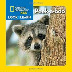 Peek-a-boo National Geographic Kids Look and Learn BRDBK