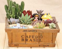 Zakka Succulent plants wood flowerpot cactus bonsai flower pot trays storage box home Desktop decoration microlandschaft-in Garden Pots & Planters from Home & Garden on Aliexpress.com | Alibaba Group