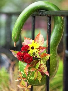 #gourd #planter ideas