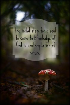 best god and nature images nature god nature quotes