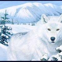Figura de Lobo branco na neve com um montanha coberta de gelo ao fundo