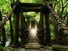 東祖谷のかずら橋